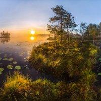 Остров на озере :: Фёдор. Лашков