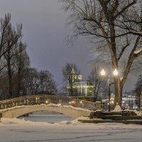 зимний вечер в парке :: Геннадий Свистов