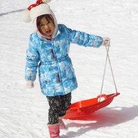 первый снег! :: Slava Hamamoto