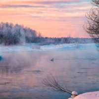 Несмотря на злой мороз ... :: Roman Lunin