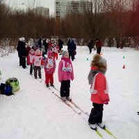 Районные соревнования по лыжным гонкам среди дошкольников :: Центр Юность