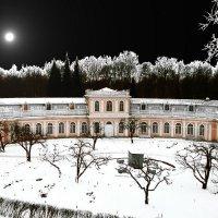 Зима, тихо светит Луна... :: VasiLina *