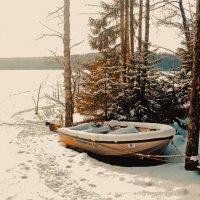 Лапинсалми находится в национальном парке Реповеси. :: Валентина Потулова