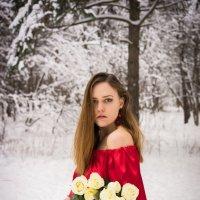 Зимняя роза :: Ирина Вайнбранд