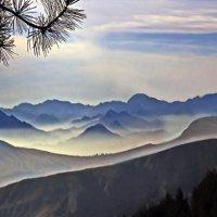 долина синих гор :: viton