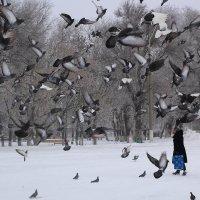 На церковной площади :: Юрий Гайворонский