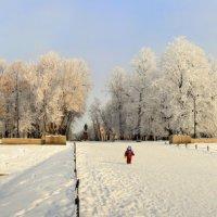 Этот большой мир :: Сергей Григорьев