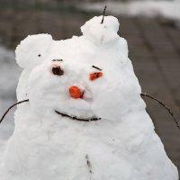 Снего-пузик. :: Анатолий Шулков