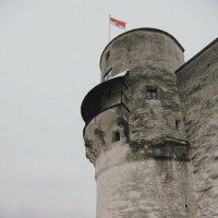 Башня :: Алексей Поляков