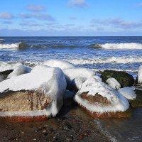 Обледеневшие камни на берегу :: Маргарита Батырева