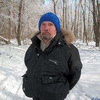 И полон дум весенних стоял я в мартовском лесу... :: Андрей Заломленков