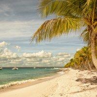 Доминикана остров Каталина :: Наталия Горюнова