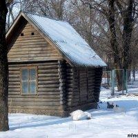 Избушка в ростовском зоопарке :: Нина Бутко
