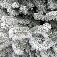 снежок на веточках :: Анастасия Боровицкая