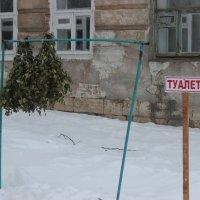 На открытом воздухе :: Дмитрий Солоненко