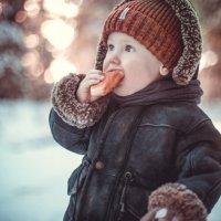 Не садись на пенёк, не ешь пирожок.. :: Ольга Токмакова