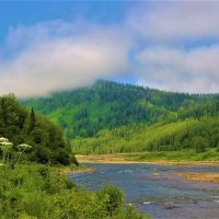 Улетающие облачка тумана :: Сергей Чиняев