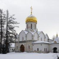 Собор Рождества Богородицы. Саввино-Сторожевский монастырь :: Юрий Шувалов