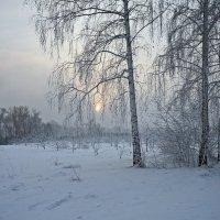 Один из декабрьских дней на острове :: Екатерина Торганская