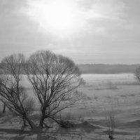 Зима красивая :: Александрр Petrov
