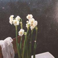 Аромат весны... :: Liliya