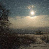 Ночь белым днём :: liudmila drake