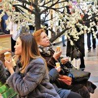 Купив мороженое, мечтают о лете! :: Татьяна Помогалова