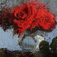 Розовый дождь :: Наталья Калинина
