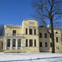Дом на Малой Невке :: Вера Щукина