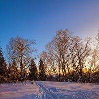 Зимний вечер за околицей :: Анатолий Иргл