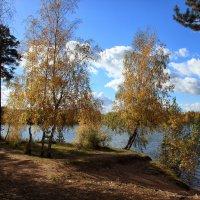 Золотая осень :: OlegVS S