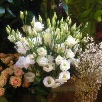 Праздничные цветы :: татьяна