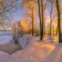 Лес на берегу реки :: Фёдор. Лашков