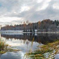Поздняя осень :: Борис Руненко