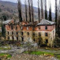 Абхазия сегодня :: Tata Wolf