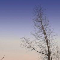 Весенний закат :: юрий Амосов