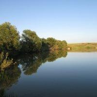 Зеркальная гладь воды :: Светлана