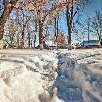 И снега в марте по колено.. :: Андрей Заломленков