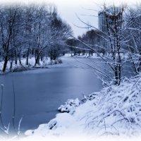 Ещё  вариант зимнего пейзажа :: Валентина Данилова