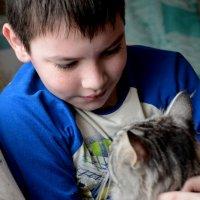 Юный кошколюб :: Анастасия Фомина