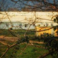 Из окна видна весна... :: Вера Катан