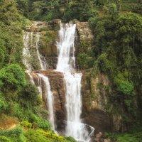 Горный водопад на Шри-Ланке :: Ольга Петруша