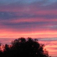 цветные облака на закате :: Светлана