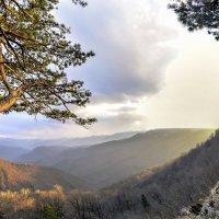 Взошел на скалу,Два дерева и трава,Выше лишь небо.... :: Александр Сыроватка