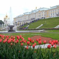 Петергофская весна :: Алла Захарова