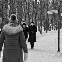 Скоро лето? :: Alexandr Zykov