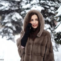 зима :: Татьяна Захарова