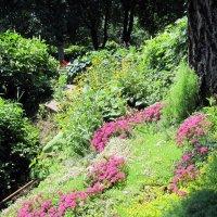Патриарший сад в городе Владимире. :: Ирина ***