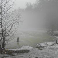 Туман :: Ольга Беляева