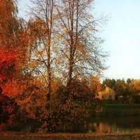 Золотая осень-III :: AstaA
